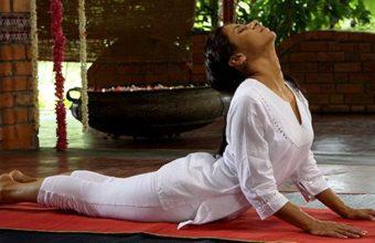 Шри Шри йога с Лили
